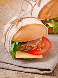 Sandwich with ham. Cheese and fresh vegetables Stock Photos