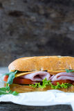 Sandwich with ham and cheese Royalty Free Stock Photo