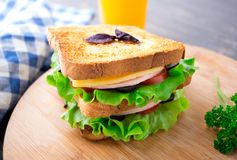 Sandwich with ham, cheese, tomatoes and lettuce Stock Images