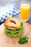Sandwich with ham, cheese, tomatoes and lettuce Royalty Free Stock Images