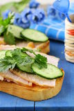 Sandwich with ham and  cucumber Royalty Free Stock Photos