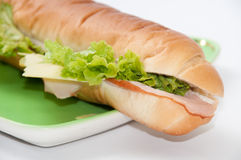Sandwich with ham and letuce on the green plate.  Royalty Free Stock Photo