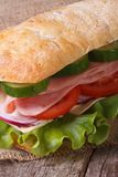 Sandwich with ham, tomato, cheese, lettuce and cucumber Stock Photography