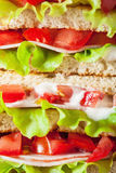 Sandwich with ham tomato and lettuce background Royalty Free Stock Image
