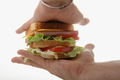 Sandwich in hand Royalty Free Stock Photography