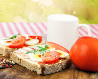 Sandwich , healthy breakfast, outdoor with bokeh Royalty Free Stock Image