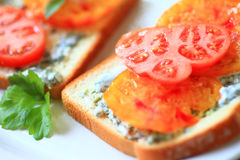 Sandwich of heirloom tomatoes with cilantro mayonnaise Royalty Free Stock Photography