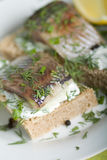 Sandwich with herring Stock Image