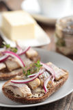 Sandwich with herring Royalty Free Stock Photography