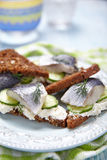 Sandwich with herring Stock Photos