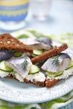 Sandwich with herring Stock Photos