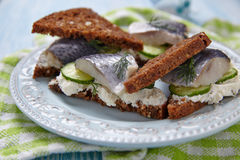 Sandwich with herring Royalty Free Stock Images