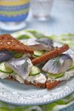 Sandwich with herring Stock Images