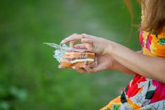 Sandwich in his hand Royalty Free Stock Image
