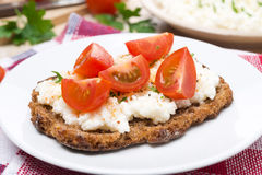 Sandwich with homemade cottage cheese, pepper and cherry tomato Royalty Free Stock Image