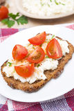 Sandwich with homemade cottage cheese, pepper, cherry tomatoes Royalty Free Stock Image