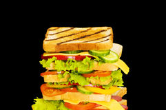 Sandwich isolated Royalty Free Stock Photo