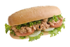 Sandwich isolated on background Royalty Free Stock Photos