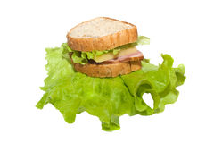 Sandwich isolated on white Royalty Free Stock Photo