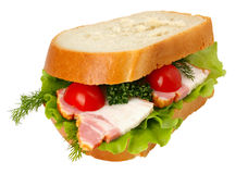 Sandwich isolated on white Stock Photos