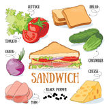 Sandwich. And its ingredients. Fast food vector illustration royalty free illustration