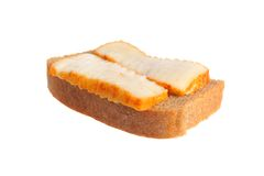 A sandwich with lard isolated on white Royalty Free Stock Photography