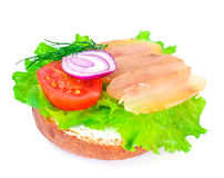 Sandwich with Lettuce, Tomato, Goat Cheese and Boiled Chicken Royalty Free Stock Photography