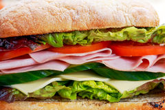 Sandwich with lettuce, tomatoes, cucumber, red onion, salami, ham, cheese Royalty Free Stock Photos