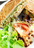 Sandwich meal with fresh salad Stock Photos