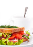 Sandwich from meat and tomatoes Royalty Free Stock Photo