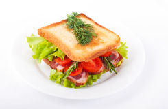 Sandwich from  meat, tomatoes and salad Stock Image