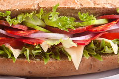 Sandwich with meat,vegetables and cheese Royalty Free Stock Photography