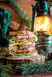 Sandwich with meat and vegetables for Lumberjack Royalty Free Stock Images