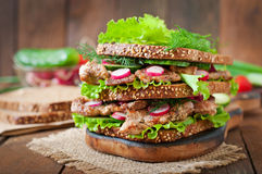 Sandwich with meat, vegetables Stock Photos