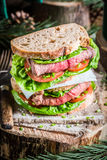 Sandwich with meat and vegetables for woodcutter Stock Image