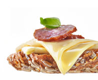 Sandwich with melted cheese Royalty Free Stock Photo