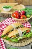 Sandwich met geroosterde vlees en groenten Stock Foto