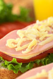 Sandwich met Ham, Kaas, Sla en Tomaat Stock Afbeelding