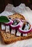 Sandwich met haringen Stock Foto's