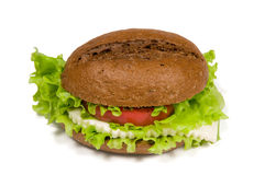 Sandwich met kaas Stock Fotografie