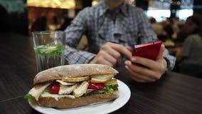 Sandwich met kip en groenten op een plaat stock video