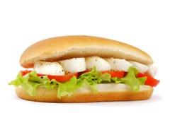 Sandwich met mozarella Stock Foto
