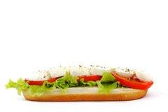 Sandwich met mozarella Royalty-vrije Stock Afbeelding