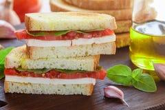 Sandwich met mozarellakaas, tomaten, Basilicum, knoflook Royalty-vrije Stock Fotografie