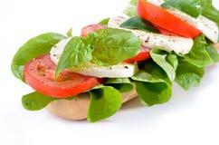 Sandwich met tomaat en mozarella Stock Afbeelding
