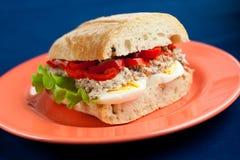 Sandwich met tonijn Stock Foto
