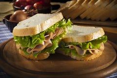 Sandwich met Turkije Royalty-vrije Stock Afbeelding