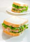 Sandwich met Turkije Royalty-vrije Stock Afbeeldingen