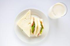 Sandwich and milk glass. Stock Photos