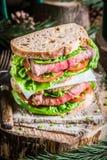 Sandwich mit Fleisch und Gemüse für Holzfäller Stockbild